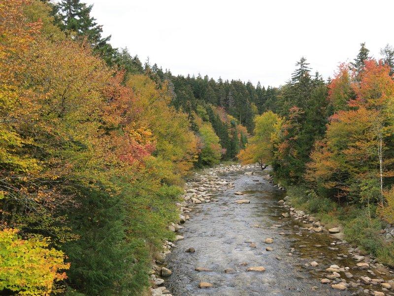 New Hampshire fall color