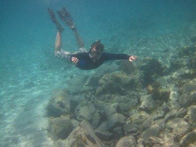 underwater..hn_2012_027.jpg