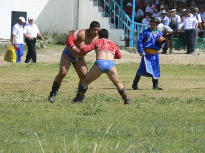 Mongoli__480.jpg