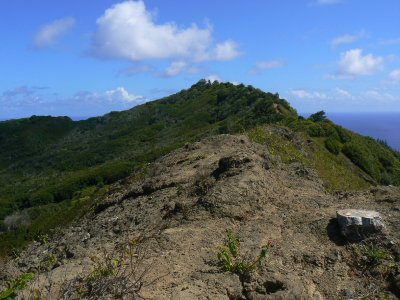 Pitcairn_Islands_325.jpg