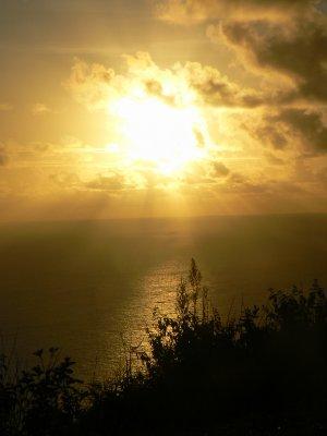 Pitcairn_Islands_491.jpg