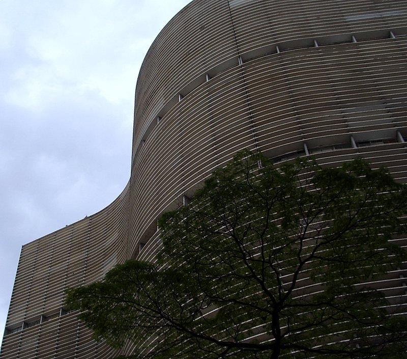 São Paulo - A Gentle Giant