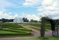 Curitiba - Botanical Garden II
