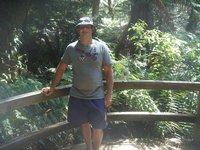 Mait's Rest Rainforest