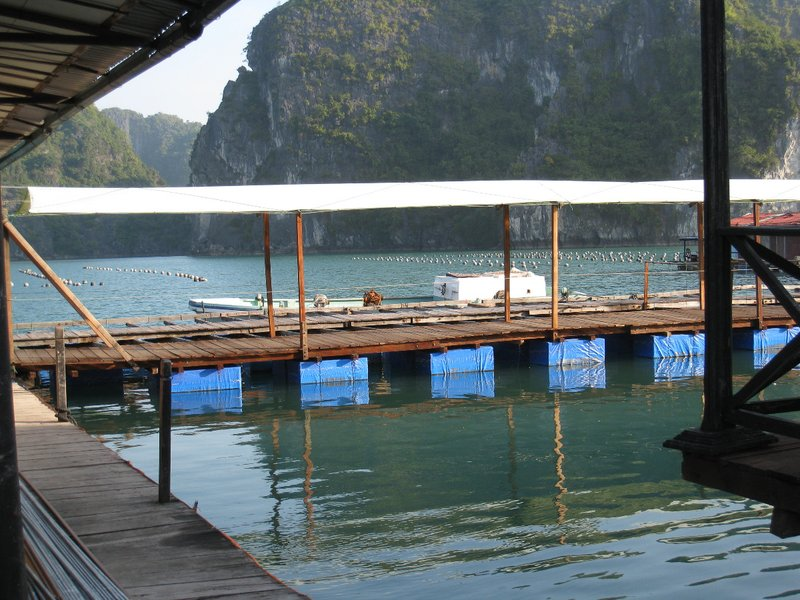 2015-01-13 Baie d'Ha Long 087