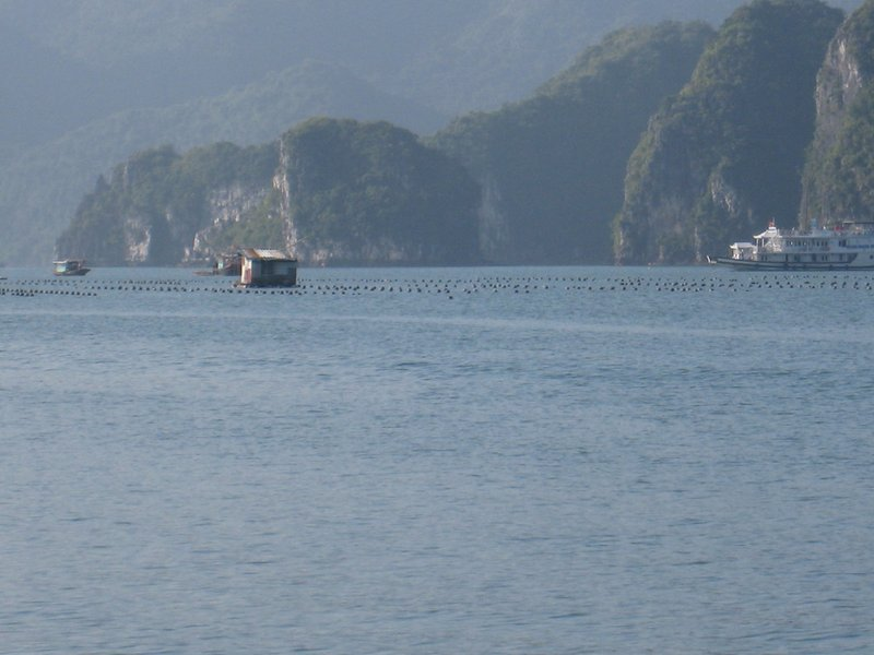 2015-01-13 Baie d'Ha Long 091