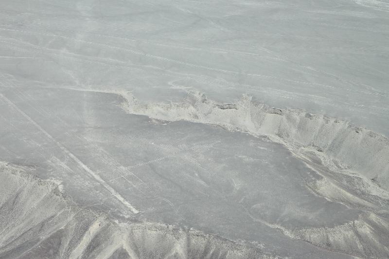 Hummingbird at Nazca