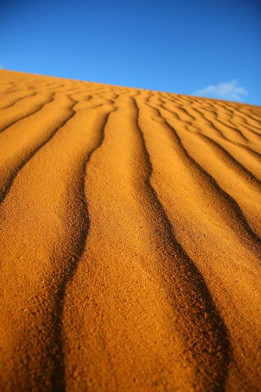 Sand Hills