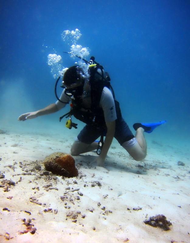 Underwater thailand