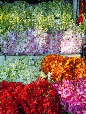 chiang_mai_flower_stall_3.jpg