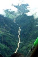 Rain Forest Papua