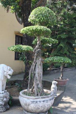 Hanoi_City_085.jpg