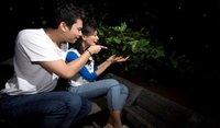 New Asia Holidaysungai-lebah wetland-johor-newasiaholiday2Sungai Lebam Wetland Johor