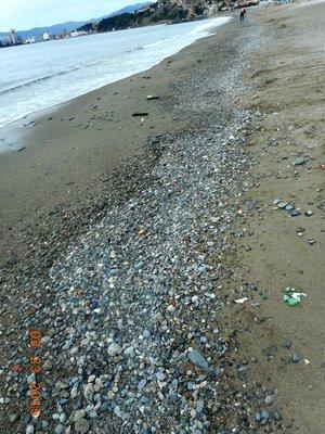 Albissola_beach.jpg