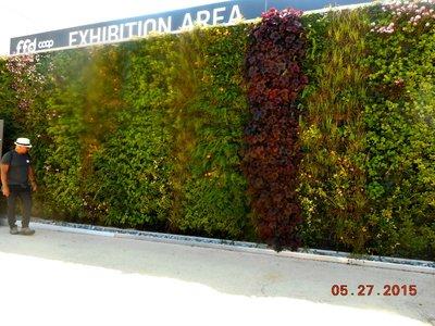 Milan_Expo_vert_garden_g.jpg