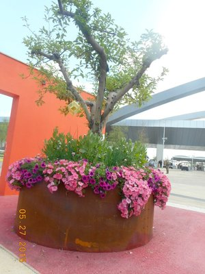 Milan_expo_planter.jpg