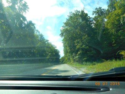 PA_road_trees.jpg