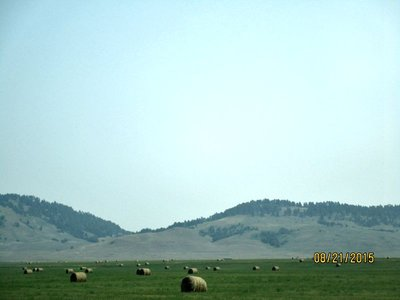 WY_hills_haybales.jpg
