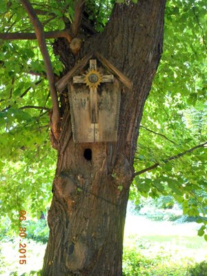 bot_birdhouse.jpg