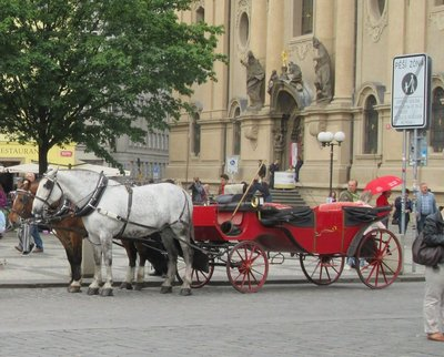 Horses and carriage waiting for tourists