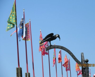 Crow decorating a gate