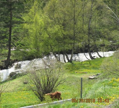 River in valley with horse in pasture