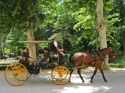 A family enjoying a horse drawn carriage ride