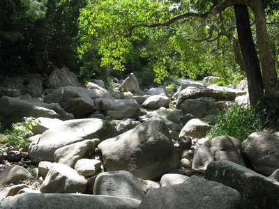 Creek flows through a jumble of huge rocks