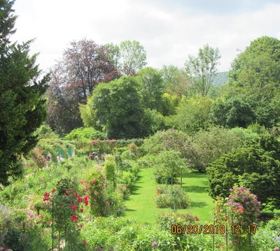 A photo of the garden from the house