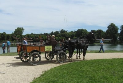 You can have a horse and wagon tour of the gardens and park.  This was popular with young families.