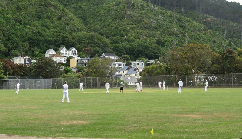 Cricket players at Wellington Botanic Garden