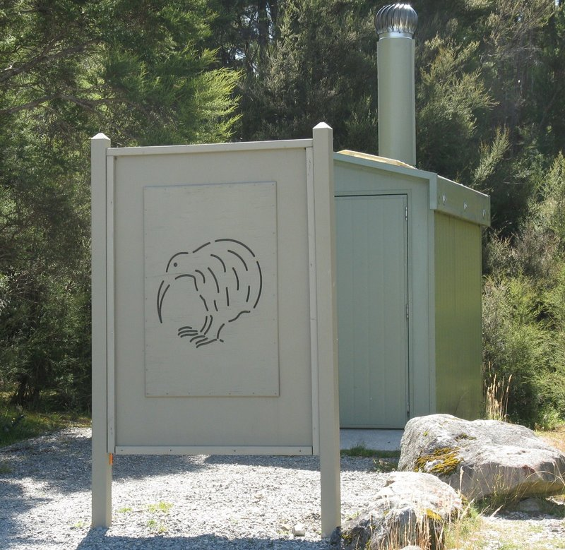 Kiwi art on privacy shield