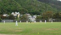 Cricket players at Wellington Botanic Garden