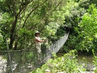 Reta on swinging bridge