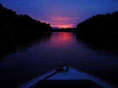 Rio Negro, Amazon