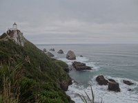 Nugget Point Wall