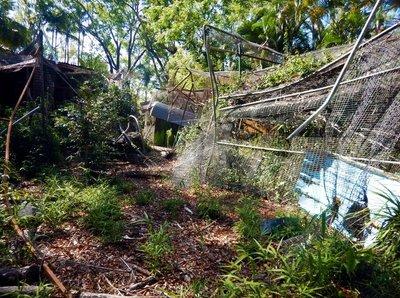 Botanic_Ga..o_disrepair.jpg