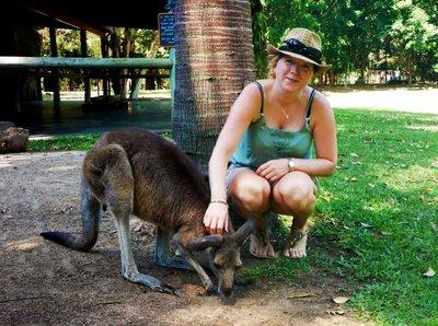 Charlotte___Grey_Kangaroo.jpg
