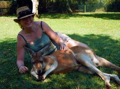 Charlotte___Red_Kangaroo.jpg