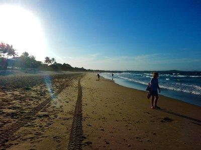 Emma_Noosa_beach.jpg