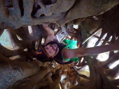 Mark_in_a_..er_Fig_Tree.jpg
