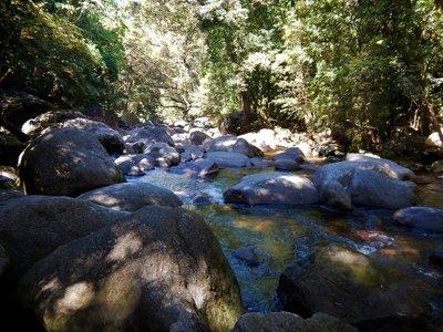 Mossman_river2.jpg
