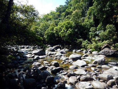Mossman_river3.jpg
