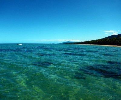 Myall_Beach_coral.jpg