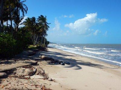 Newell_Beach.jpg