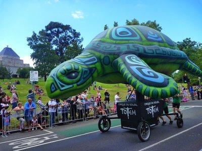 Parade_turtle.jpg