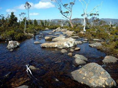 River_path1.jpg