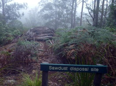 Sawdust_disposal_site.jpg