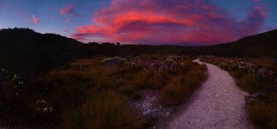 Sunset_Path_to_Dove_Lake.jpg