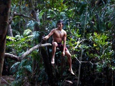 Tarzan_Mas..imming_hole.jpg